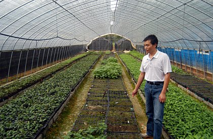 One of five green houses in the Jiangxi province, used to rear 500,000 seedlings for the second phase of the project. Photo: Helge Bruelheide