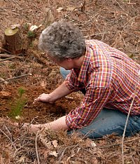 On 19 March 2009, Prof. Dr. Helge Bruelheide planted the first tree for the largest biodiversity experiment worldwide. Photo: Sylvie Herrmann