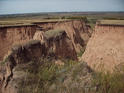 Gully erosion is evidence of landscape destruction in the agricultural steppes of Southern Siberia (Photo: Manfred Fr�hauf)